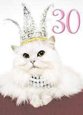 Avanti Female 30th Birthday Humour Greeting Card