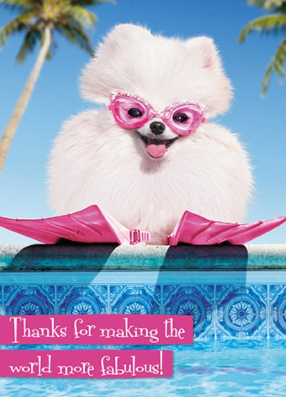 Avanti Niece Birthday Humour Greeting Card