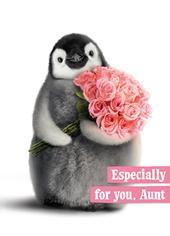 Avanti Aunt Birthday Humour Greeting Card