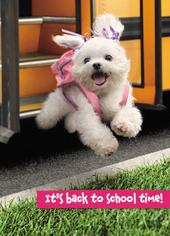 Avanti Back To School Time Greeting Card