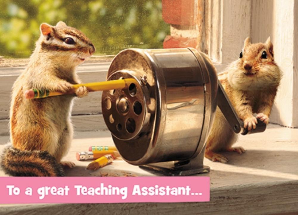 Avanti Teaching Assistant Thank You Greeting Card