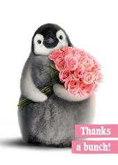 Avanti Thanks A Bunch Thank You Greeting Card
