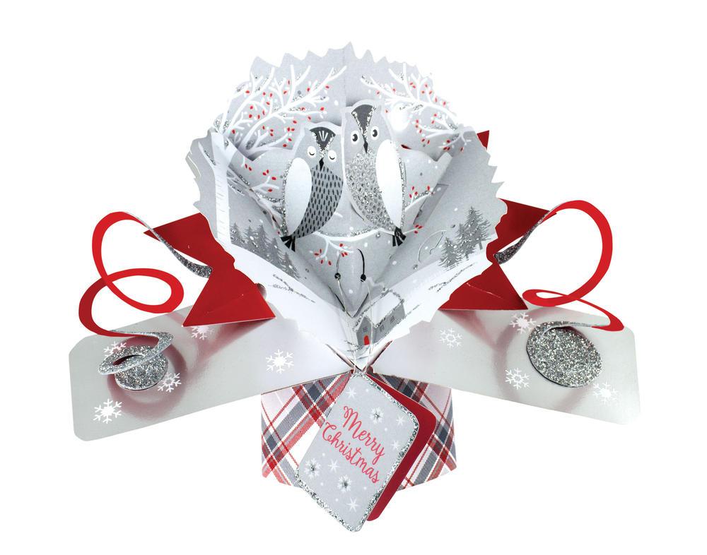 Owls Petite Christmas Pop-Up Greeting Card