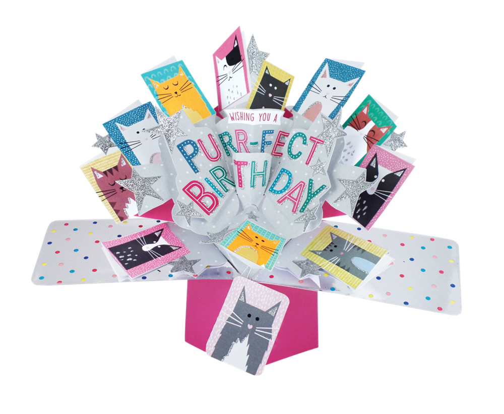 Purrfect Birthday Pop-Up Greeting Card