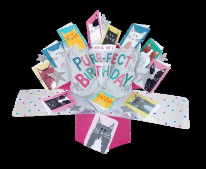 Purrfect Birthday Pop-Up Greeting Card