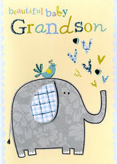 New Baby Grandson Greeting Card