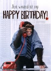 Chimp Happy Birthday Greeting Card