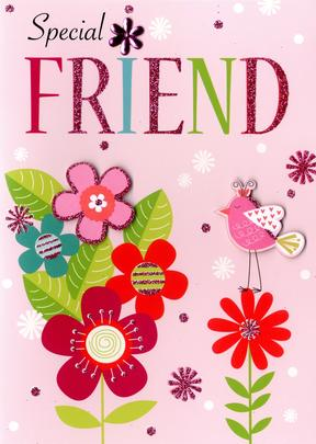 Special Friend Birthday Greeting Card