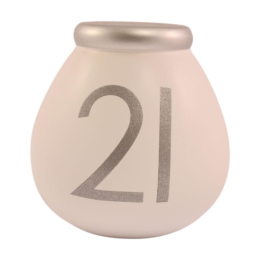 21st Birthday Pots of Dreams Money Pot