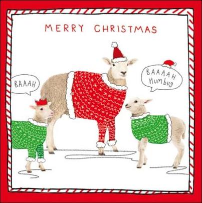 Pack of 5 Sheep Baaaah Humbug Samaritans Charity Christmas Cards