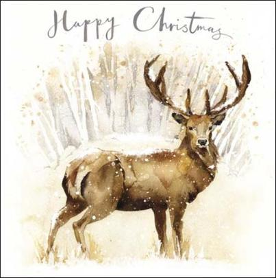 Pack of 5 Snowy Deer Action For Children Charity Christmas Cards