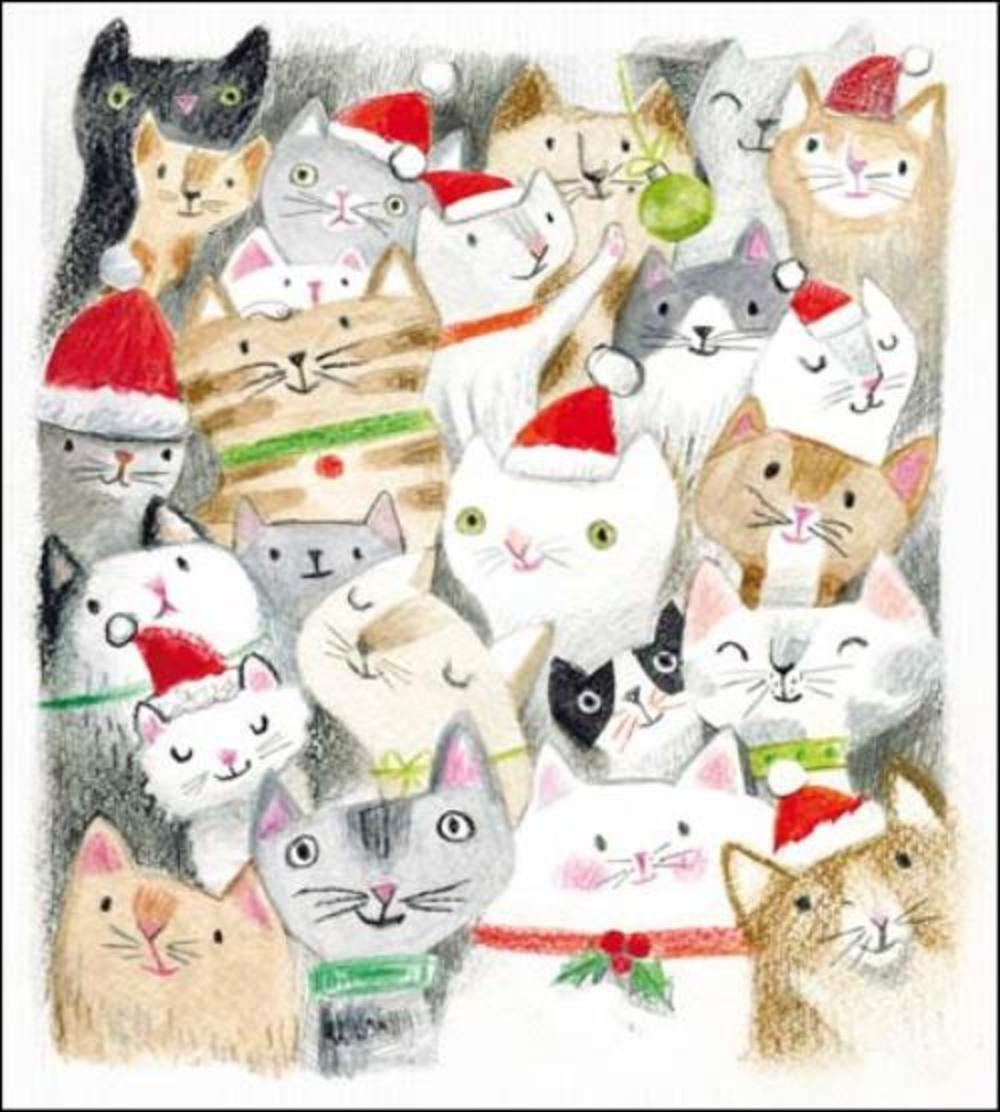 Pack of 5 Xmas Cats Action For Children Charity Christmas Cards