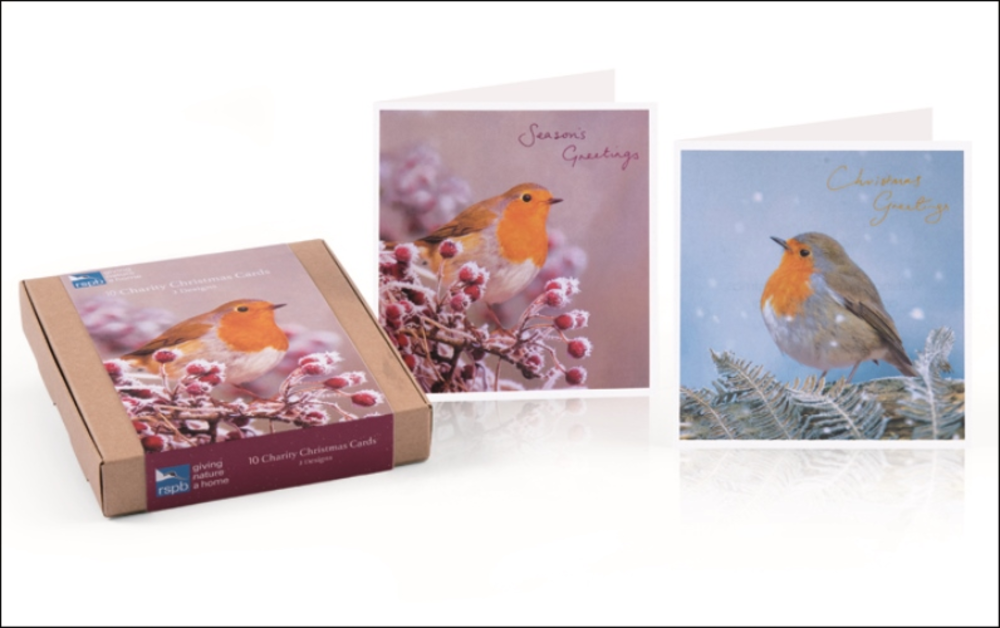 Box of 10 Assorted Robins RSPB Charity Christmas Cards