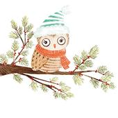 Pack of 8 Mini Owl Woodland Trust Charity Christmas Cards