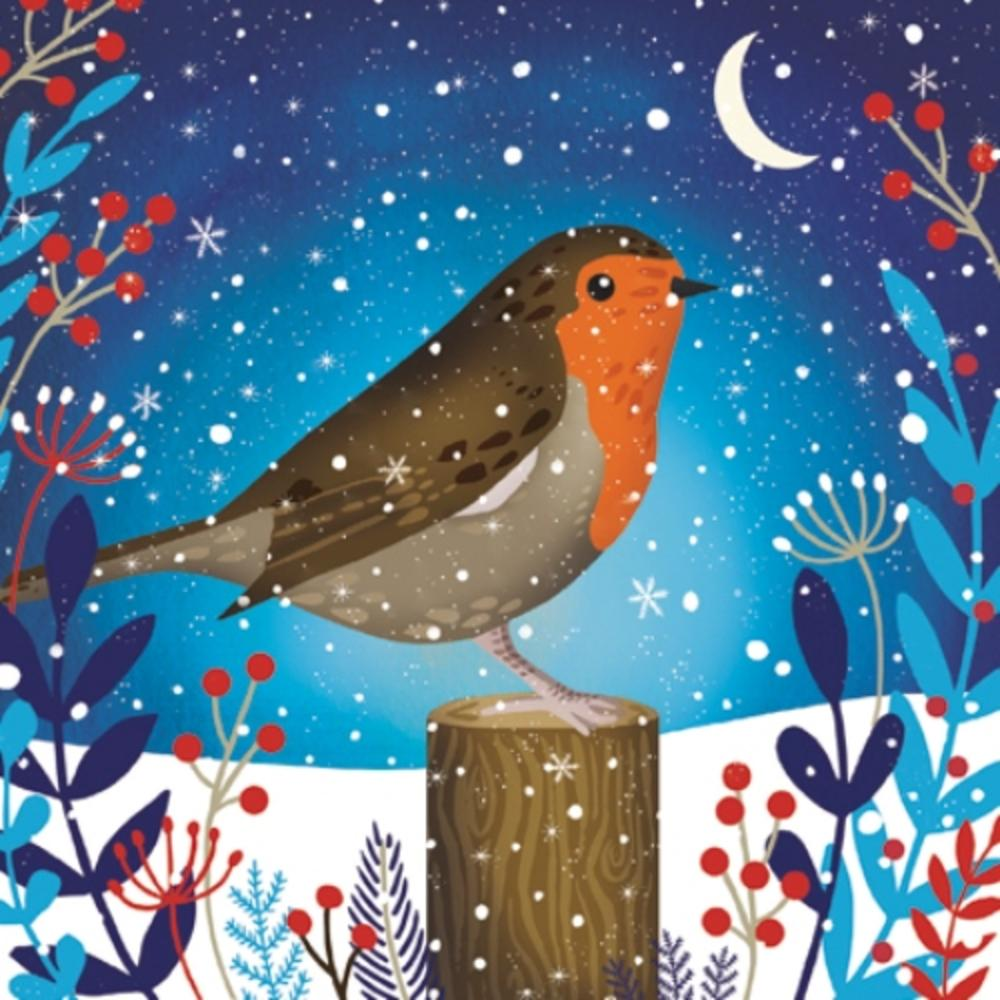 Pack of 8 Starlit Robin Shelter Fairdeal Charity Christmas Cards