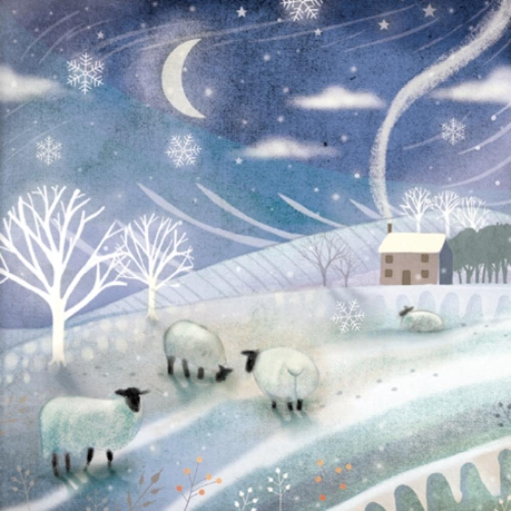 Pack of 8 Winter Woollies Multiple Sclerosis Fairdeal Charity Christmas Cards