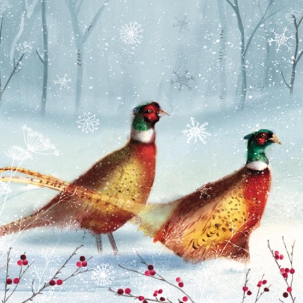 Pack of Bright Pheasants Royal Marsden Fairdeal Charity Christmas Cards