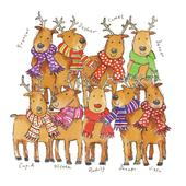 Pack of 8 Team Rudolph Epilepsy Action Fairdeal Charity Christmas Cards