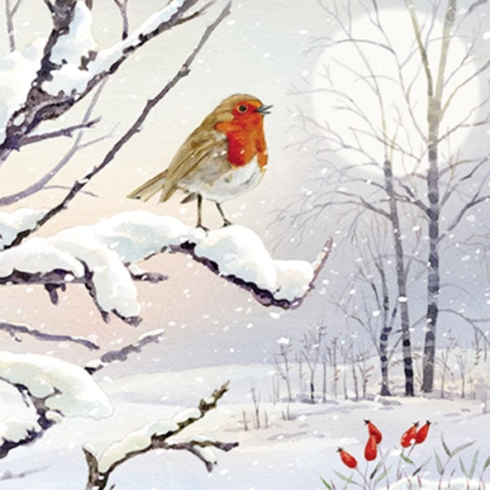 Pack of 6 Robin In Snow Charity Christmas Cards Supports Multiple Charities