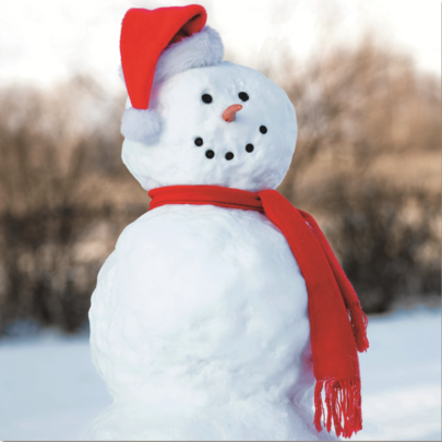 Pack of 10 Snowman RSPCA Charity Christmas Cards