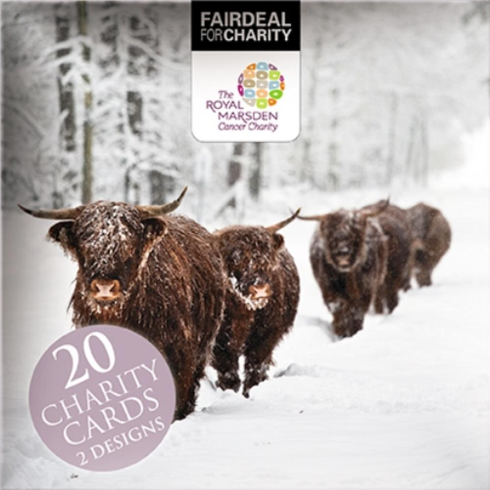 Box of 20 Highland Cow Royal Marsden Cancer Charity Christmas Cards ...
