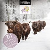 Box of 20 Highland Cow Royal Marsden Cancer Charity Christmas Cards