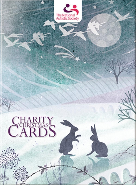 Box of 12 Winter Scene National Autistic Society Charity Christmas ...