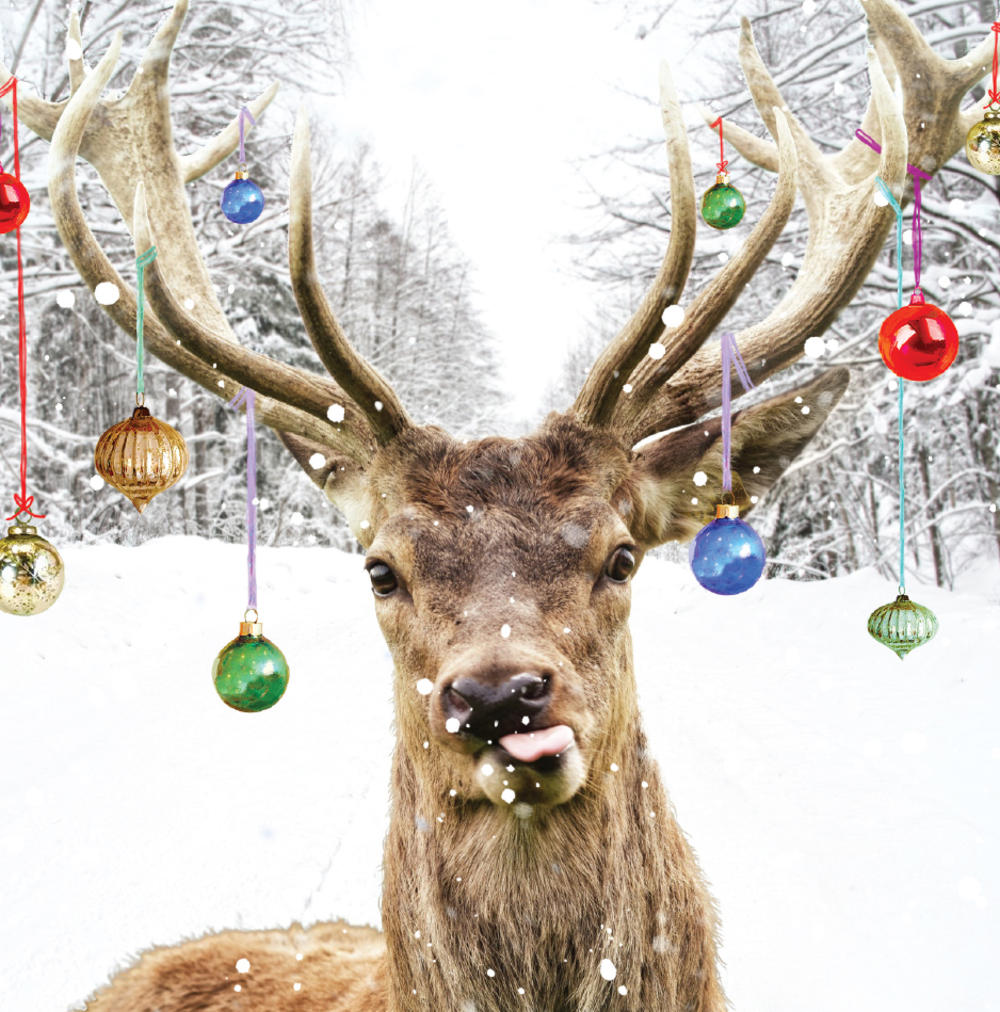 3D Holographic Reindeer Christmas Greeting Card