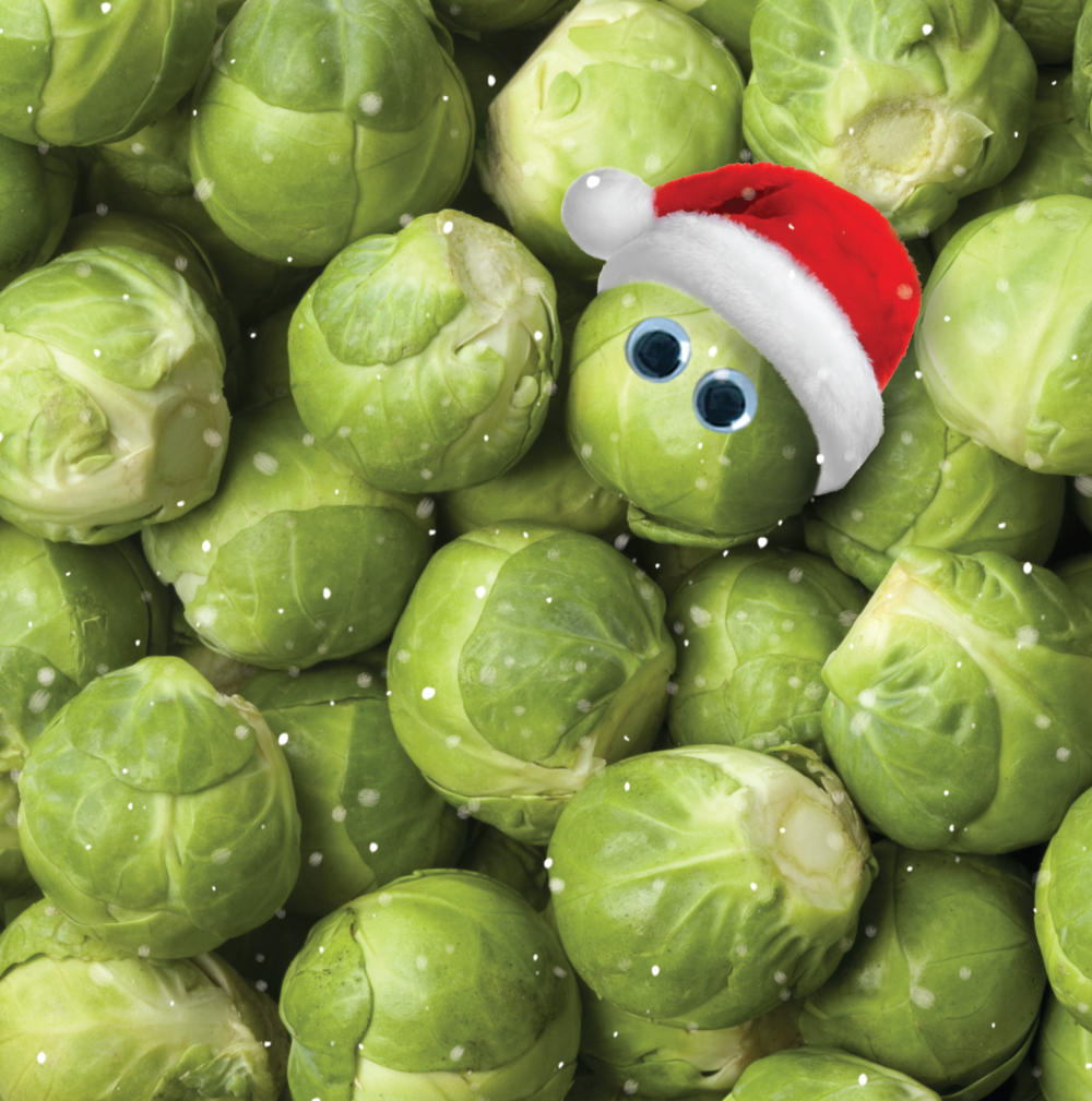 3D Holographic Brussel Sprout Christmas Greeting Card