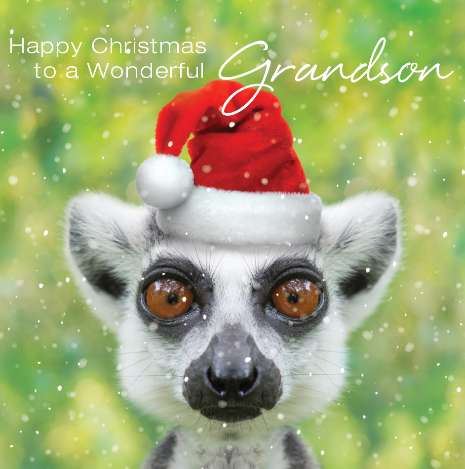 3d holographic grandson christmas greeting card cards love kates 3d holographic grandson christmas greeting card kristyandbryce Gallery