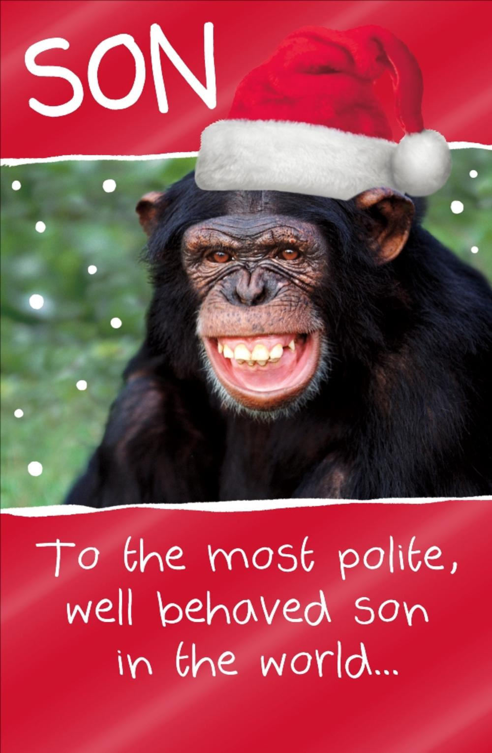 Son Funny Animal Humour Christmas Greeting Card