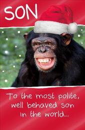 Son Funny Animal Humour Christmas Greeting Card