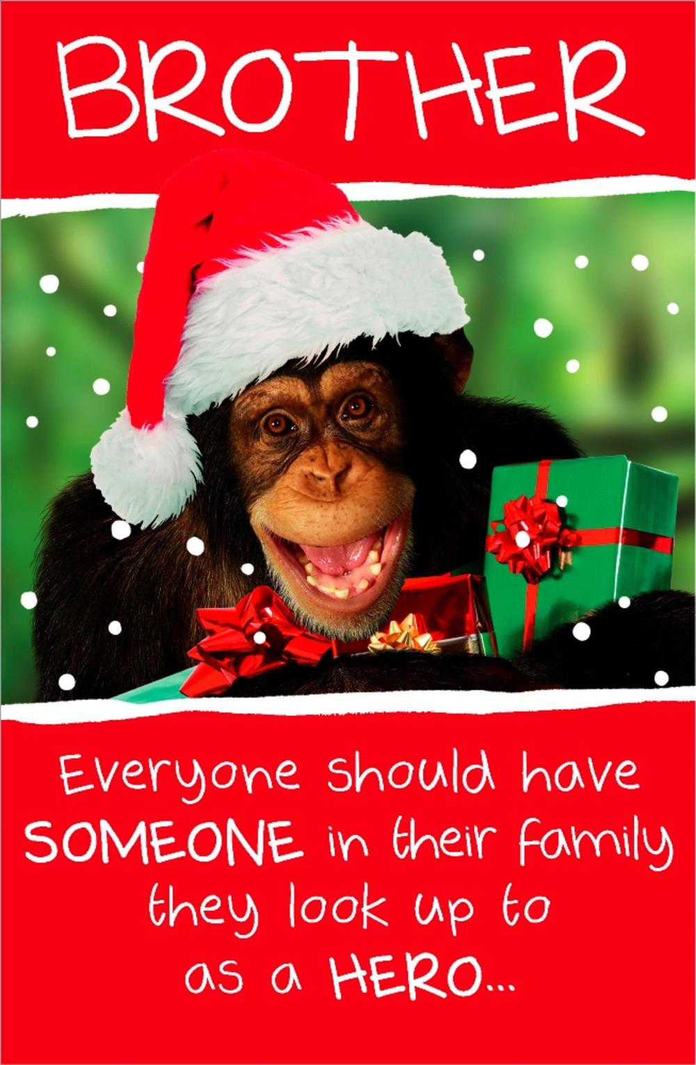 Brother Funny Animal Humour Christmas Greeting Card Cards Love Kates