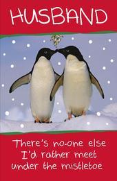 Husband Funny Animal Humour Christmas Greeting Card