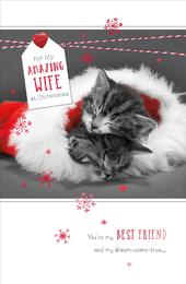 Amazing Wife Talk To The Paws Christmas Greeting Card