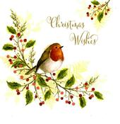 Pack of 10 Square Holy Berry Christmas Cards
