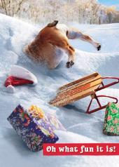 Avanti Son Funny Christmas Greeting Card