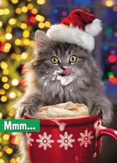 Avanti Mum Funny Christmas Greeting Card