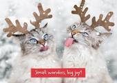 Avanti Mum & Dad Funny Christmas Greeting Card