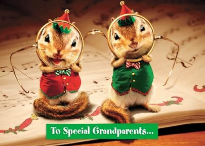 Avanti Grandparents Funny Christmas Greeting Card