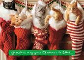 Avanti Grandma Funny Christmas Greeting Card