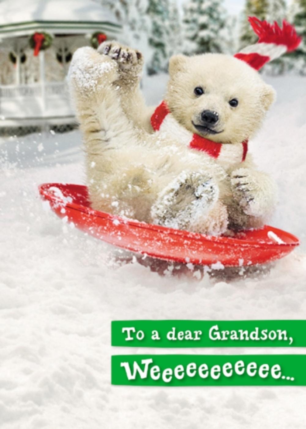 Avanti Grandson Funny Christmas Greeting Card