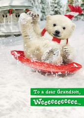 Avanti Grandson Funny Christmas Greeting Card
