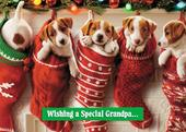 Avanti Special Grandpa Funny Christmas Greeting Card