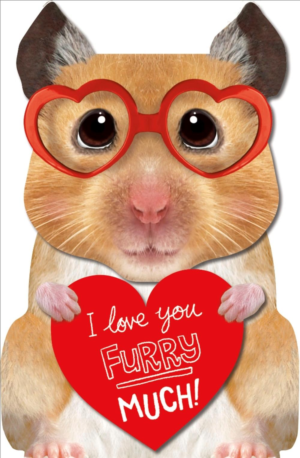 I Love You Furry Much 3D Hamster Valentine's Day Greeting Card
