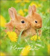 Pack of 5 Bunnies Happy Easter Greetings Cards