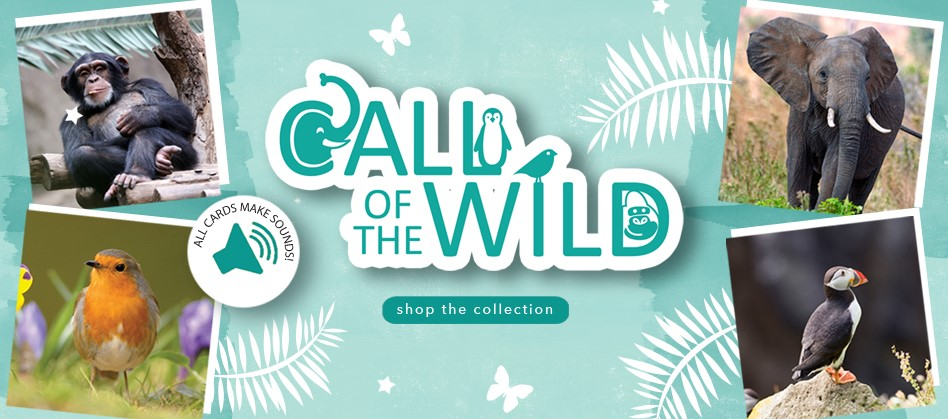Call Of The Wild Sound Cards