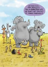 Dancing Elephants Funny Birthday Greeting Card