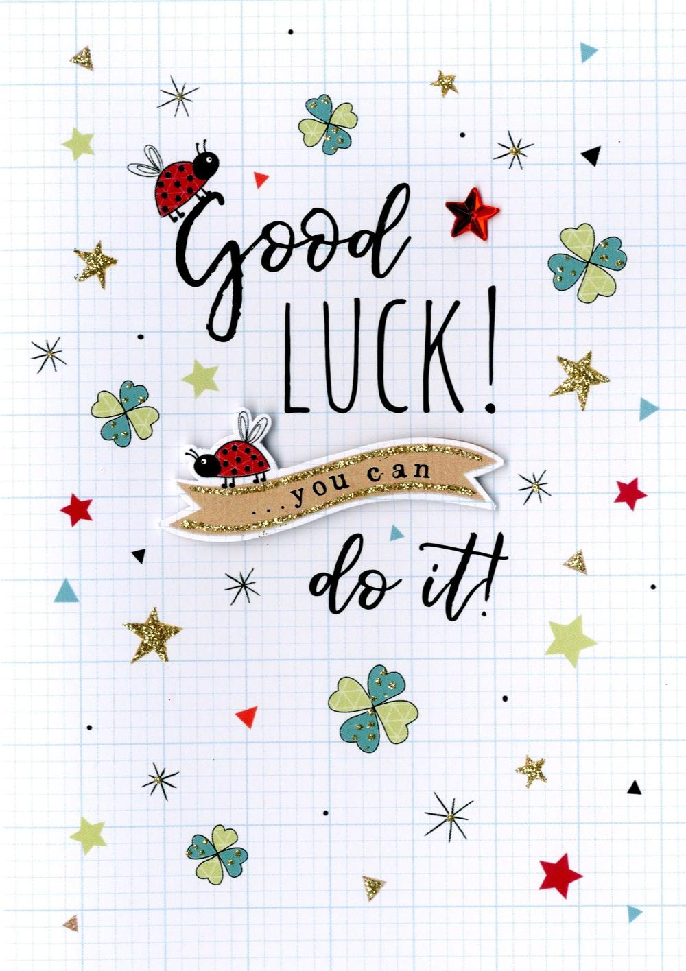 Good Luck You Can Do It Greeting Card