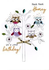 Hoot Hoot Hooray Birthday Irresistible Greeting Card